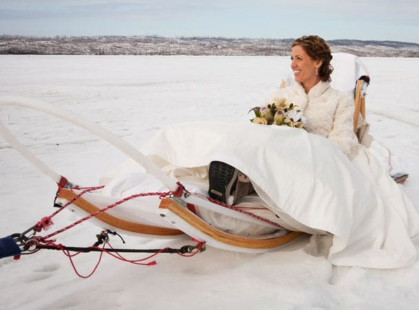 Wedding dogsled winter